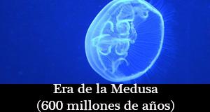 era-medusa
